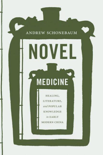 Book cover of Novel Medicine